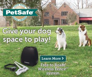 Keep pets safe at home